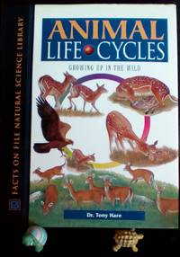 Animal Life Cycles : Growing up in the Wild