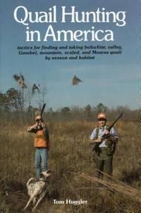 Quail Hunting in America