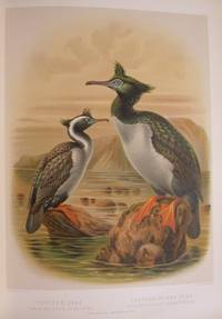 A History Of The Birds Of New Zealand by  Sir Walter Lowry [1838-1906] BULLER - Hardcover - Second Edition, Substantially Revised and Enlarged. A classic of - from D & E Lake Ltd. (ABAC, ILAB) (SKU: elala2407)