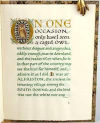 The Owl at Alfriston