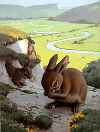 Rabbits with a pastoral valley below by  Edward  (1900-1981) Osmond - Signed - from Alan Wofsy Fine Arts (SKU: 16-3145)