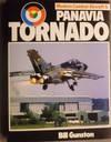 image of Panavia Tornado (Modern combat aircraft)