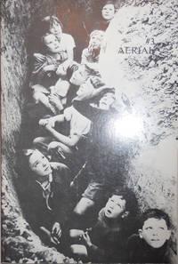 Aerial #3