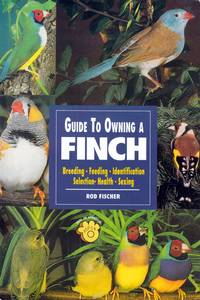The Guide to Owning a Finch