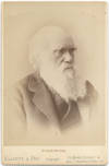 View Image 1 of 3 for Cabinet Card Photograph of Charles Darwin Inventory #417735