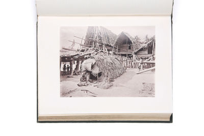 Picturesque New Guinea. With an...