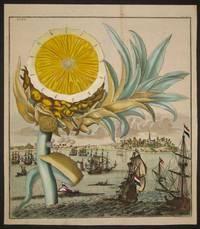 "Pineapple, Tab IV from ""Nurnberische Hesperides"""