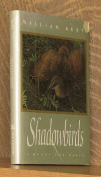 Shadowbirds - A Quest for Rails
