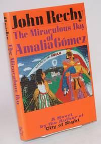 The miraculous day of Amalia Gómez; a novel