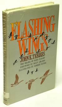 Flashing Wings  The Drama of Bird Flight