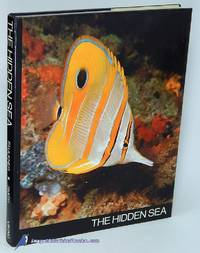 The Hidden Sea