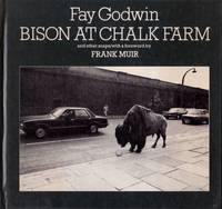 image of Bison at Chalk Farm and Other Snaps