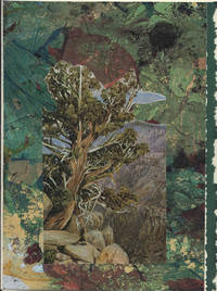 image of Old Cypress or Juniper Tree in Nevada Mountains, California detail on a one-of-a-kind hand marbled paper composition presented on a blank note card.