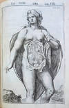 View Image 6 of 7 for Tabulae anatomicae LXXIIX (with 2 other works) Inventory #44261