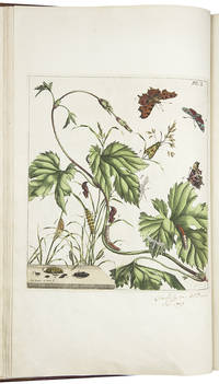 The Aurelian. A natural history of English moths and butterflies, together with the plants on which they feed ... Drawn, engraved, and coloured, from the natural subjects themselves