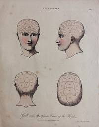 Gall and Spurzheim's Views of the Head