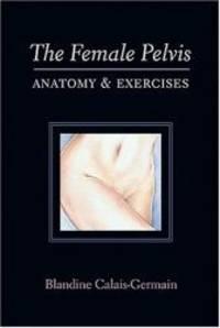 The Female Pelvis Anatomy & Exercises