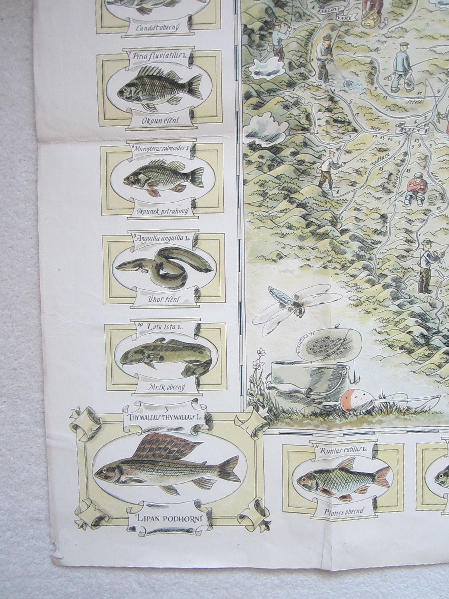 Mapa sportovního rybářství a lovné ryby v českých řekách (The map of sport fishing and game fish in Czech rivers.) (photo 3)