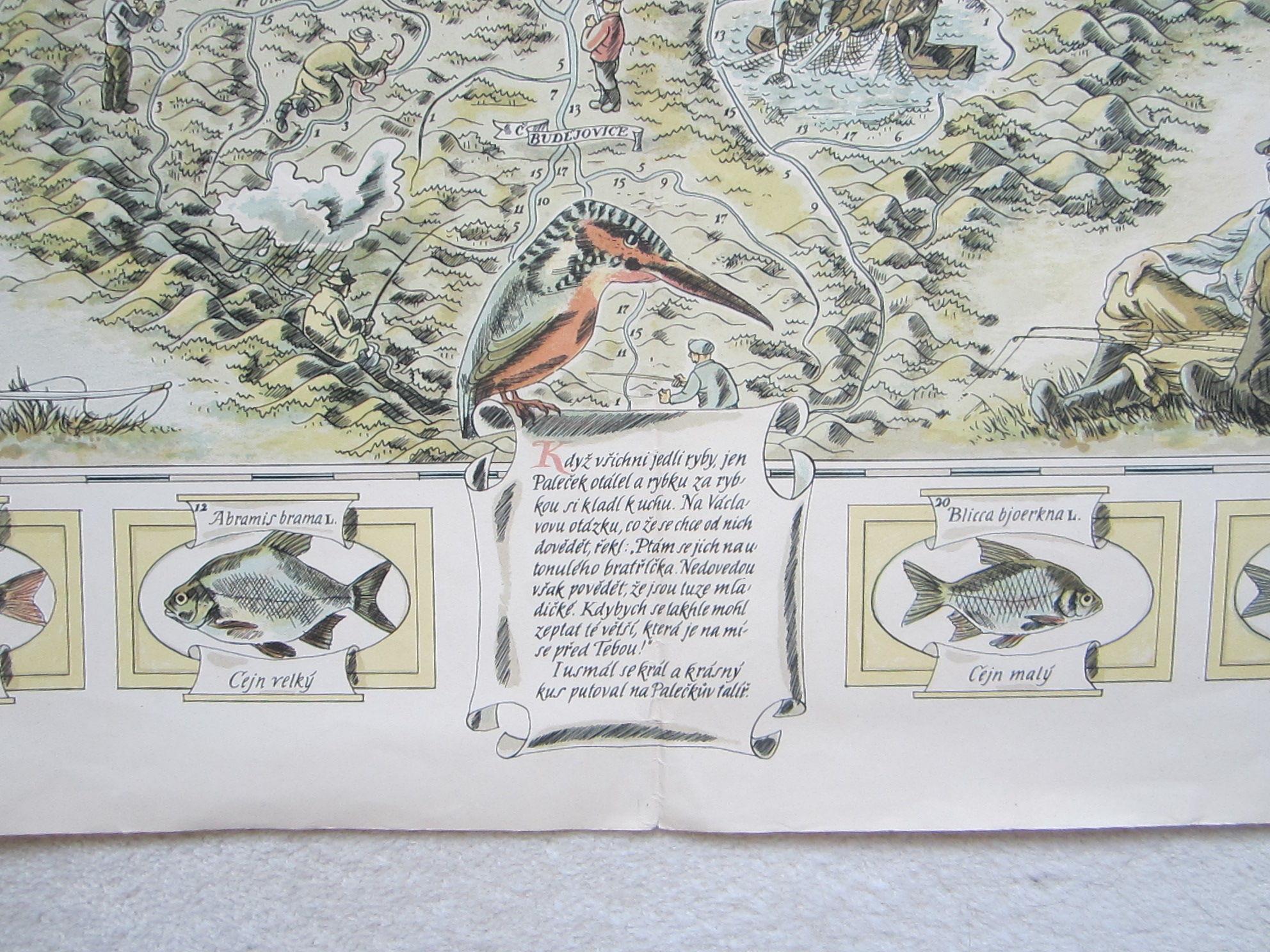 Mapa sportovního rybářství a lovné ryby v českých řekách (The map of sport fishing and game fish in Czech rivers.) (photo 4)