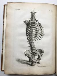 Engravings of the Bones, Muscles and Joints