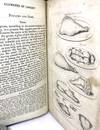 View Image 3 of 4 for The Domestic Oracle or, A Complete System of Modern Cookery and Family Economy Containing Directions... Inventory #1576