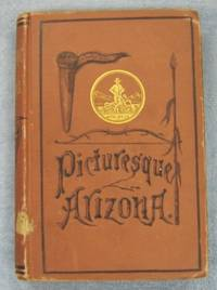 Picturesque Arizona by  E Conklin - Hardcover - No Edition Stated - 1878 - from Books of Paradise (SKU: LG140)