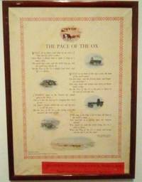 PACE OF THE OX, RHODESIA by  CULLEN. T GOULDSBURY - from BOOKLOVERS PARADISE (SKU: 11856)