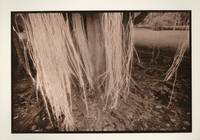 LUMINATIONS: TWENTY OFFSET LITHOGRAPHS
