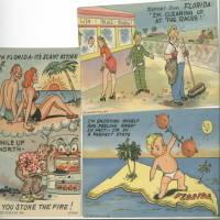 image of 3 VINTAGE COMIC FLORIDA POSTCARDS