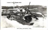 image of Dryden, Ontario, Canada - Anglers Catch Exaggeratedly Giant Fish on Real Photo Postcard (RPPC)