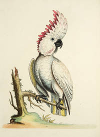 A Natural History of Uncommon Birds, and of Some Other Rare and Undescribed Animals ... [With:] Gleanings of Natural History Exhibiting Figures of Quadrupeds, Birds, Insects, Plants, &c