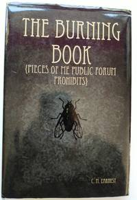 image of The Burning Book
