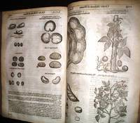 [HERBAL] THE HERBALL OR GENERALL HISTORIE OF PLANTES. GATHERED BY JOHN GERARDE OF LONDON MASTER IN CHYRURGERIE Very Much Enlarged and Ammended by Thomas Johnson, Citizen and Apothecarye of London