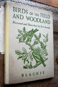 Birds Of The Field And Woodland