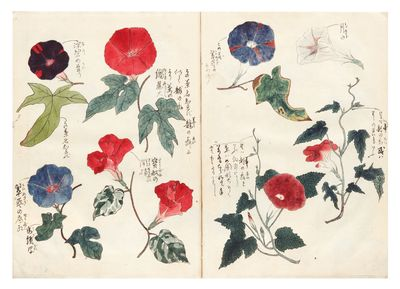 62 pages (all of the drawings are pasted onto the blank leaves of the album). 8vo (275 x 207 mm.), o...
