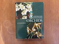 AUSTRALIAN INDIGENOUS ORCHIDS (VOL. 1: THE EPIPHYTES. THE TROPICAL TERRESTRIAL SPECIES)