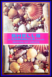 image of Shells of Cornwall's Beaches. Identifying and Collecting