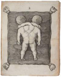 Specimina Anatomica, cum clarriss. Doctissimorumque Virorum Epistolis aliquot & Testimoniis