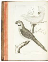 L'Histoire Naturelle éclaircie dans une de ses parties principales l'ornithologie, qui traite des oiseaux de terre, de mer et de riviere