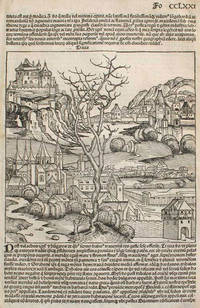 Liber chronicarum- Nuremberg Chronicle, an individual page from the Chronicle featuring Thrace and Turkey, Plate No. CCLXXI