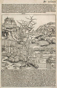 image of Thrace and Turkey, from the Nuremberg Chronicle.  Woodblock
