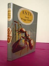 New Naturalist Monograph No.   8 ANTS