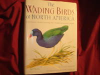 The Wading Birds of North America (North of Mexico). A Definitive Work Covering the United States and Canada. by  Allan W Eckert - First edition.  - 1987. - from BookMine and Biblio.com