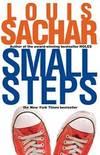 image of Small Steps (Readers Circle)