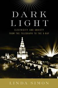 image of Dark Light : Electricity and Anxiety from the Telegraph to the X-Ray