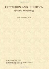 Excitation and Inhibition: Synaptic Morphology