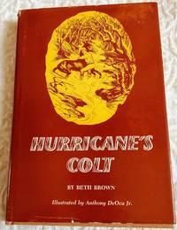 image of HURRICANE'S COLT