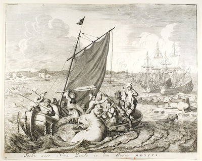 18th century. 35 x 27.5 cm, engraving, showing whales, polar bears and walruses, and sailors hunting...