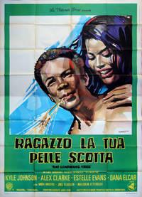 image of LEARNING TREE, THE [RAGAZZO LA TUA PELLE SCOTTA] (1969) Italian poster