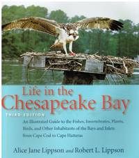 image of Life in the Chesapeake Bay (SIGNED)